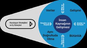 Kuruluş stratejileri ve İş süreçleri